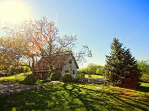 Ferienwohnung Walnut Tree Cottage Lovasberény